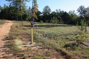 electric-deer-fence-for-site
