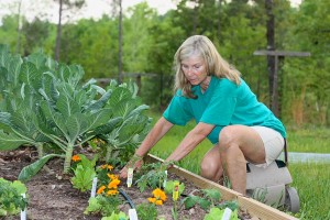 I love this shot. Not only does it feature the love of my life; it also illustrates the transition process. We're letting the collards in the background and the lettuce in the foreground go a few more days, but Farmer Borden isn't letting that keep her from planting her summer crop of tomatoes and marigold alongside them.