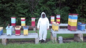 Jim currently maintains more than 100 beehives. He specializes in helping others get started with beekeeping.